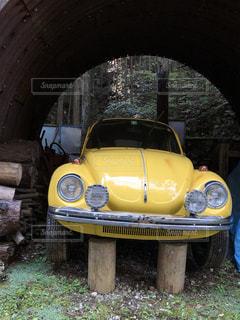 林の中の黄色いオブジェの写真・画像素材[1574827]