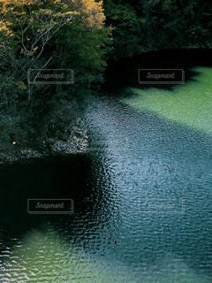 早明浦ダムの写真・画像素材[1575132]