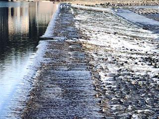 白鷺の集まる、仁淀川の堰。の写真・画像素材[1609159]