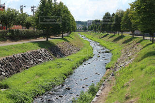 riverの写真・画像素材[1482789]