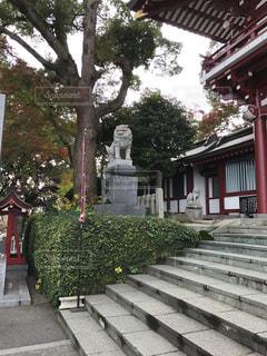 神社の写真・画像素材[296587]