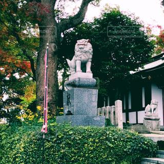 神社の写真・画像素材[300002]