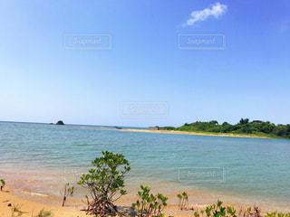 海の写真・画像素材[507349]