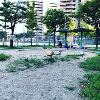 公園の砂場にての写真・画像素材[718259]