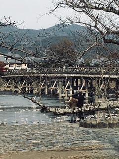 渡月橋の写真・画像素材[1317658]