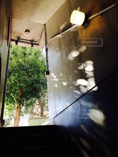 光の写真・画像素材[1364898]