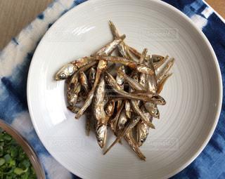 小魚の写真・画像素材[1403085]
