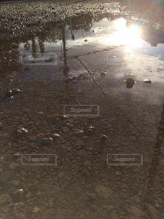 水の体の写真・画像素材[1447772]