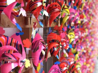 色とりどりの花のグループの写真・画像素材[1510090]
