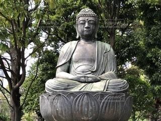 阿弥陀如来立像の写真・画像素材[1510840]