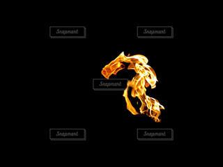 火炎の写真・画像素材[1687432]