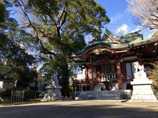 柴又八幡神社の写真・画像素材[1698635]