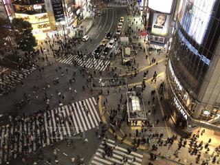 渋谷スクランブル交差点の写真・画像素材[1705437]