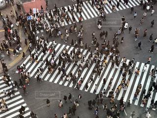 渋谷スクランブル交差点の写真・画像素材[1705454]