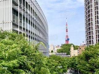都会の高い建物の写真・画像素材[2280784]