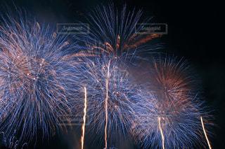 空に花火の写真・画像素材[1318481]