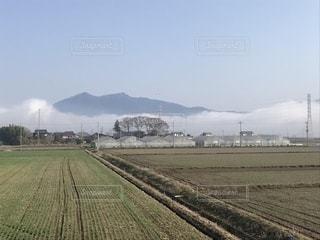 田園から見る筑波山の写真・画像素材[1318718]