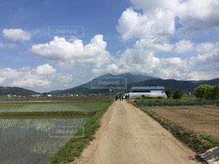 今から筑波山まで歩きます!の写真・画像素材[1319446]