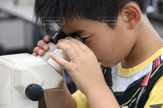 顕微鏡を覗く少年の写真・画像素材[1326612]