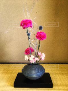素敵な生け花の写真・画像素材[1325566]