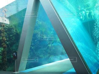 誰もいない水族館の写真・画像素材[1322764]