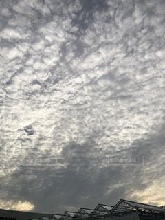 雲。の写真・画像素材[1323745]