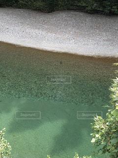 自然の写真・画像素材[2008441]