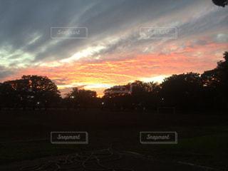街に沈む夕日の写真・画像素材[1455720]