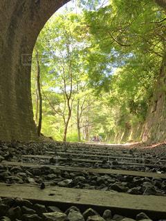 廃線跡とトンネルの写真・画像素材[1324375]