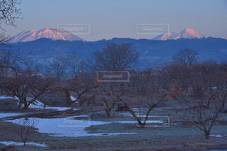 朝の北信五岳の写真・画像素材[1737754]