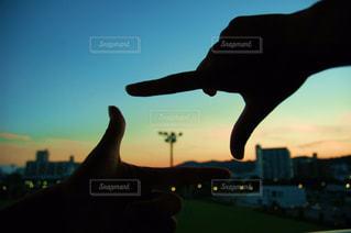 日没の前に鳥の立っています。の写真・画像素材[1381146]