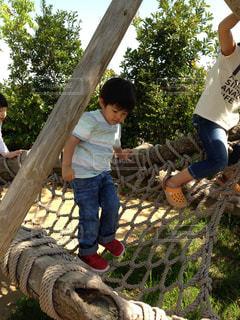 アスレチックで遊ぶ男の子の写真・画像素材[1342866]