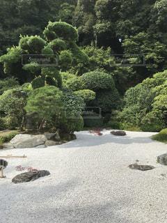 日本庭園の写真・画像素材[1331303]