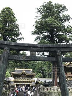 日光東照宮の写真・画像素材[1411793]