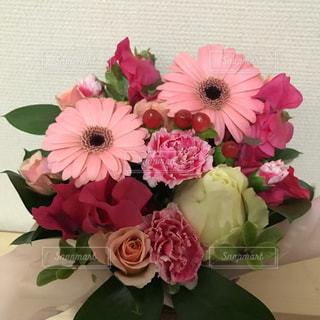 花束の写真・画像素材[1333748]