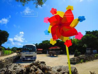 夏の竹富島の写真・画像素材[1524950]