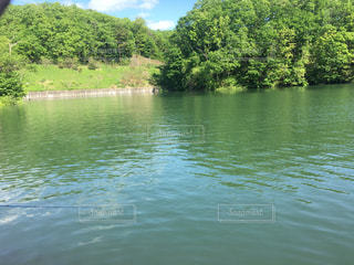 増水した池1の写真・画像素材[1332395]