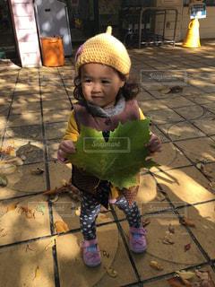 大きな葉っぱ見つけた!の写真・画像素材[1500072]
