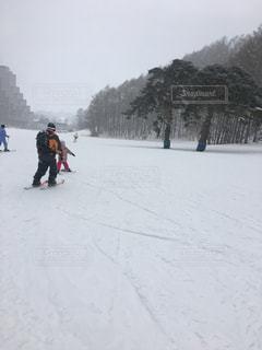 スキーを滑るの写真・画像素材[1331345]