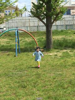 公園を走っている少女の写真・画像素材[1331352]