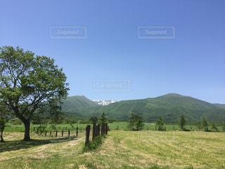 壮大な山と草原の写真・画像素材[1337708]