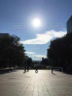 大通公園の写真・画像素材[1335062]