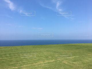 芝生の丘と水平線の写真・画像素材[2269512]