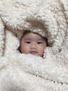 赤ちゃんの写真・画像素材[1333339]