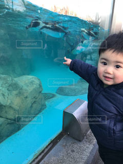 水のプールで泳ぐ子の写真・画像素材[1333656]