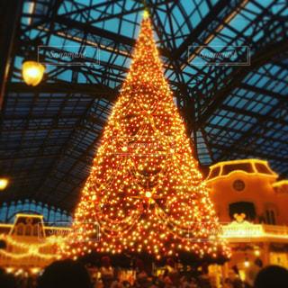 メリークリスマスの写真・画像素材[1331139]
