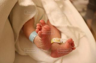 うまれたての赤ちゃんの足の写真・画像素材[1611207]