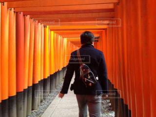 伏見稲荷を散策の写真・画像素材[1333682]