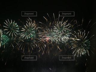空に花火の写真・画像素材[1334329]