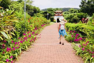 庭のパスを歩いている人のグループの写真・画像素材[1331282]